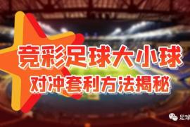 【干货】竞彩足球大小球对冲套利方法大揭秘